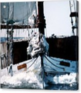 Wilma Lee Acrylic Print