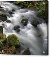 Wilson Creek #15 Acrylic Print