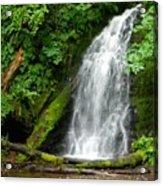 Wilson River Hwy Waterfall Acrylic Print