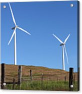 Wind Energy Wind Turbines In A Field Washington State. Acrylic Print by Gino Rigucci