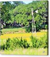 wind mill N weeds Acrylic Print