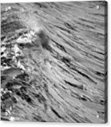 Wind Swept Acrylic Print by Brad Scott