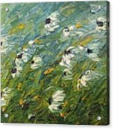 Wind Swept Daisies Acrylic Print by Robert Laper