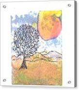 Windblown 7 Acrylic Print