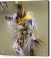 Pow Wow Windigo 2 Acrylic Print