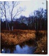 Winding Creek 2 Acrylic Print