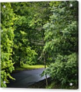 Winding Road Bluestone State Park West Virginia Acrylic Print