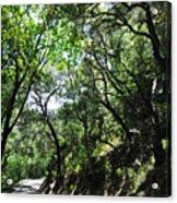Winding Road Santa Ynez Mountains Acrylic Print
