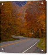 Winding Road Acrylic Print by Robert  Torkomian