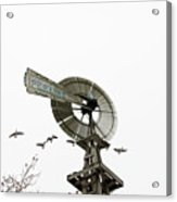 Windmill And Geese Acrylic Print