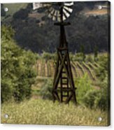 Windmill And Vineyards Acrylic Print