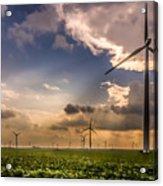 Windmill Farm Acrylic Print