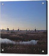 Windmills At Kinderdijk In Wintersun Acrylic Print