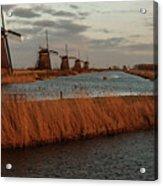 Windmills In The Evening Sun Acrylic Print