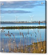 Windmills On A Windless Morning Acrylic Print