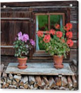 Window And Geraniums Acrylic Print