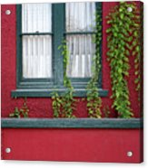 Window And Vines Acrylic Print