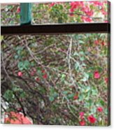 Window Bottle Acrylic Print