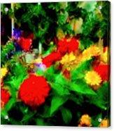 Window Box Of Flowers Acrylic Print