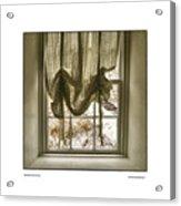 Window Dressing Acrylic Print