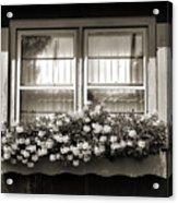 Window Flower Box 2 Acrylic Print