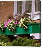 Window Flower Box Acrylic Print