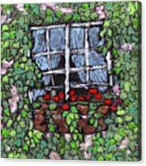 Window Flower Box Acrylic Print