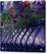 Window Flowerbox Acrylic Print