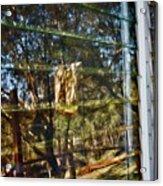 Window Reflection Acrylic Print