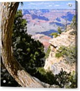 Window To The Past 21 - Grand Canyon Acrylic Print
