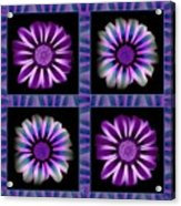 Windowpanes Brimming With  Moonburst Stripes Of Flowers - Scene 6 Acrylic Print