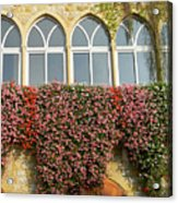 Windows In Spring Acrylic Print