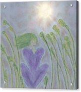 Windsitter Spring Breeze Acrylic Print
