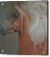 Windward Acrylic Print