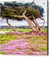 Windy Tree Acrylic Print