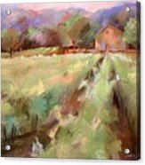 Wine Country 2 Acrylic Print