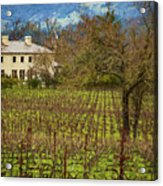 Wine Country California 1 Acrylic Print