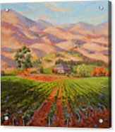 Wine Country II - Talley Vineyard Arroyo Grande Acrylic Print