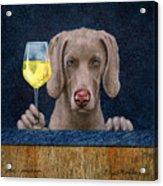 Wine-maraner Acrylic Print