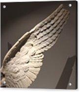 Wing Acrylic Print
