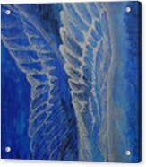 Wings Of Angel Acrylic Print