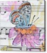 Wings V Acrylic Print