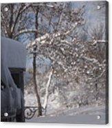 Winter 1 Acrylic Print