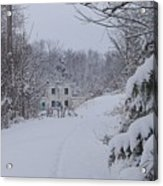 Winter 2010 Acrylic Print