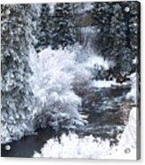 Winter Along The Creek Acrylic Print