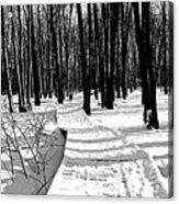 Winter Boardwalk In Black And White Acrylic Print