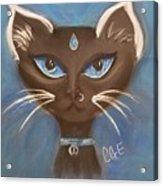 Winter Cat Acrylic Print