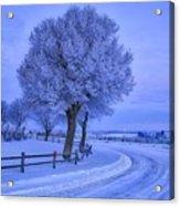 Winter Chill Acrylic Print