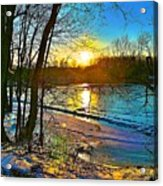 Winter Color Acrylic Print