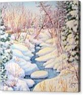 Winter Creek 1  Acrylic Print